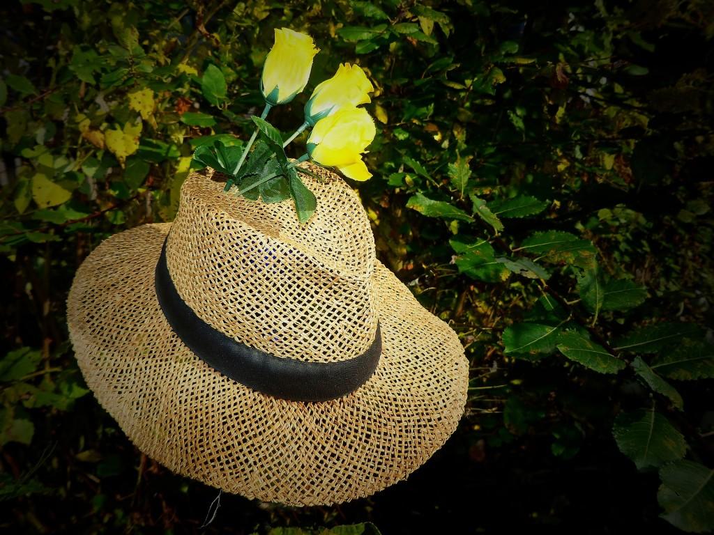 straw-hat-1752236_1920